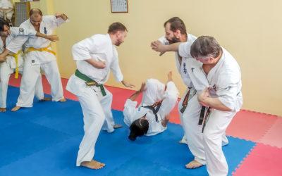 Семинар по Гошин-Дзюцу (самооборона) базовый курс.