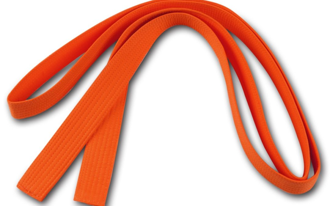 Оранжевый пояс (10 кю) — уровень стабильности.
